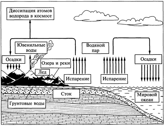 Круговорот воды в биосфере