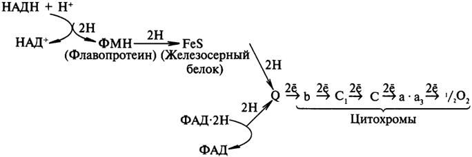 Схема электронотранспортной