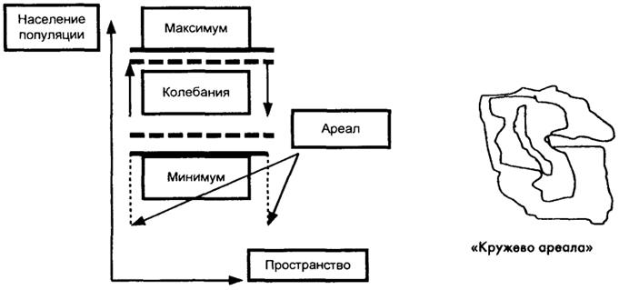 Рис. 25.1 Схемы