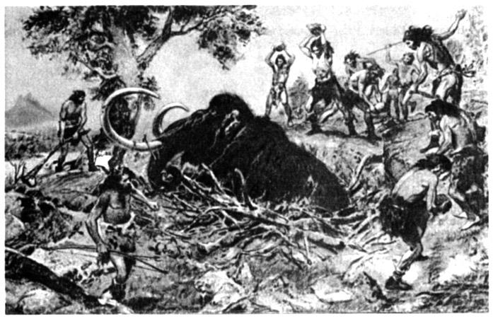 История физической культуры и спорта Охота на мамонта приблизительно 15 12 тыс лет до н э