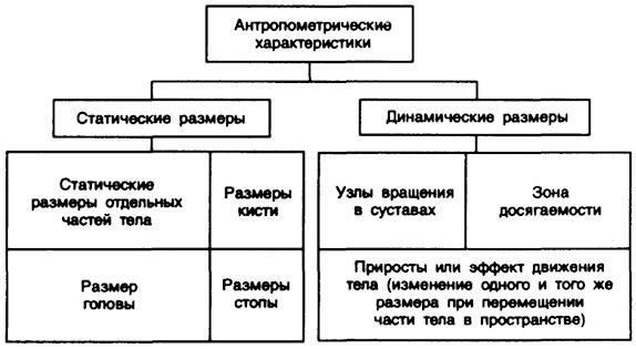 антропометрических