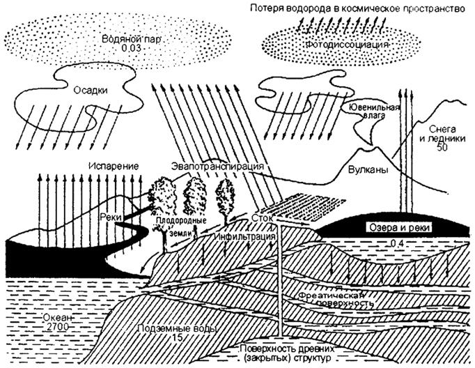 Общая схема круговорота воды