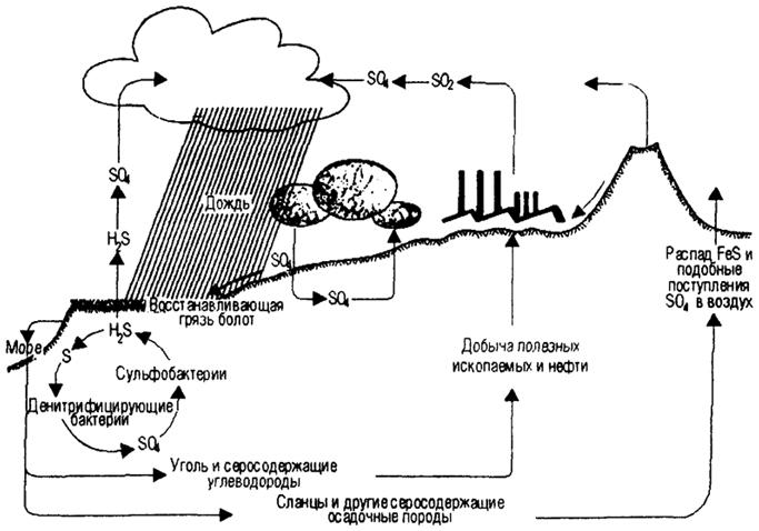 ...эрозия, осадкообразование, выщелачивание, дождь, абсорбация-десорбция и др. - с такими биологическими процессами...