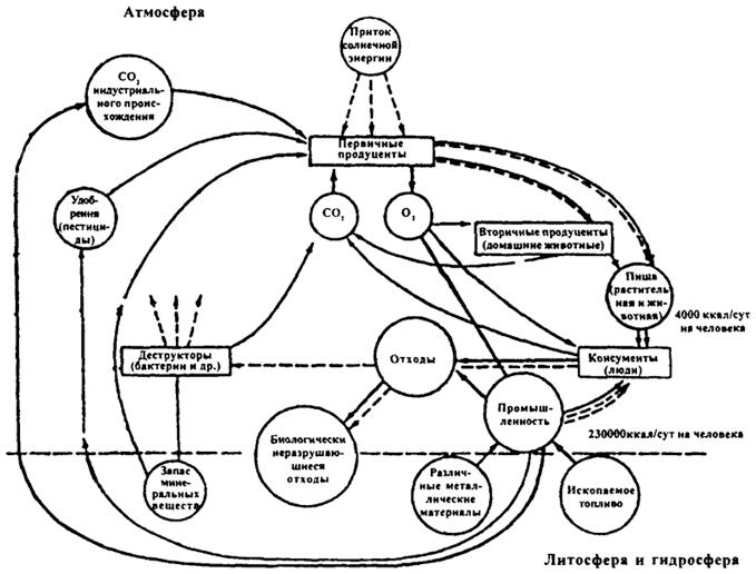 Поток энергии и круговорот