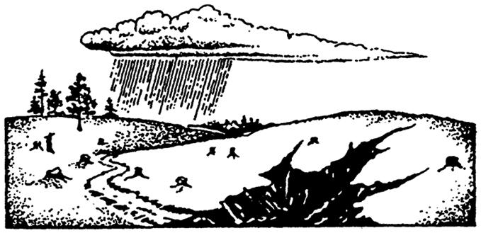 Эрозия почвы и образование