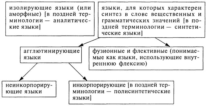 языков как стадии единого