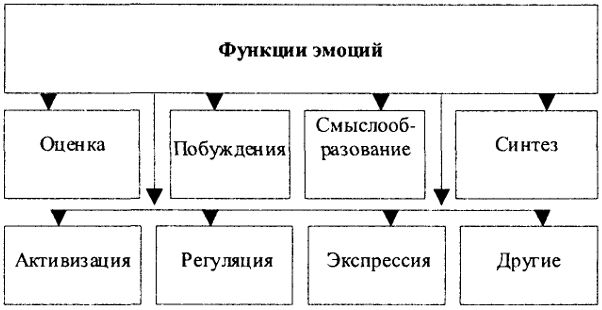 Схема 125. Функции эмоций